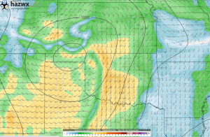 18z GFS Surface Winds Hr 102